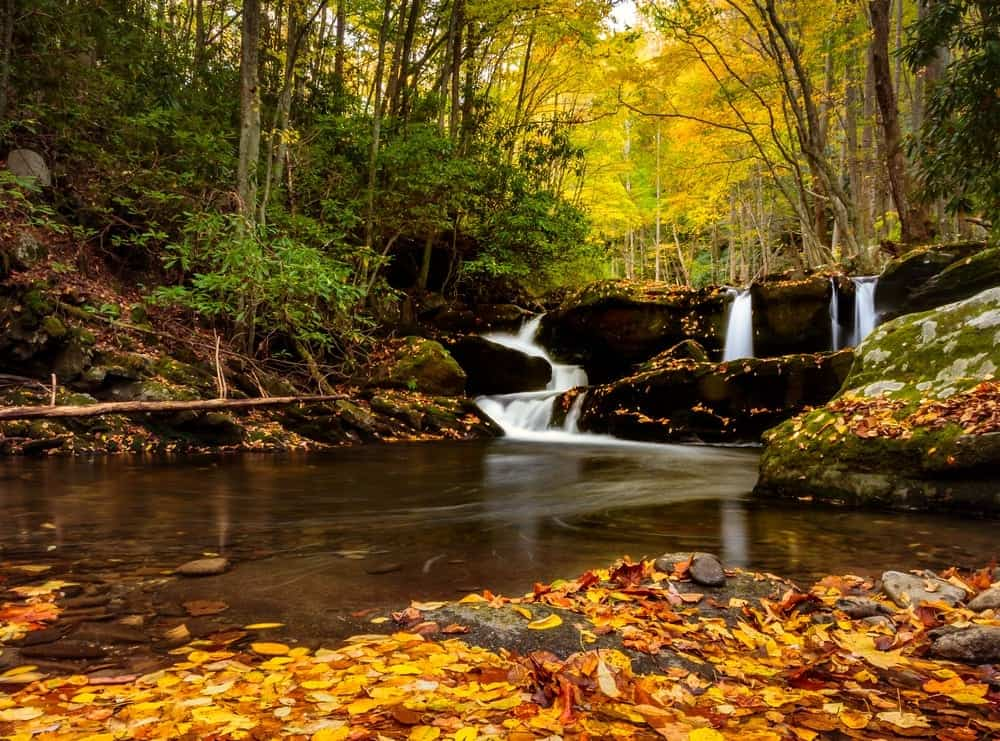 The Best Ways To Experience The Fall In The Smoky