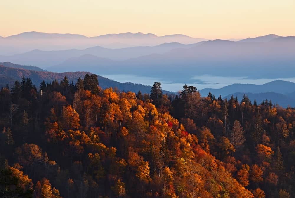 Top 3 gatlinburg attractions to visit before the fall for God s gift cabin gatlinburg