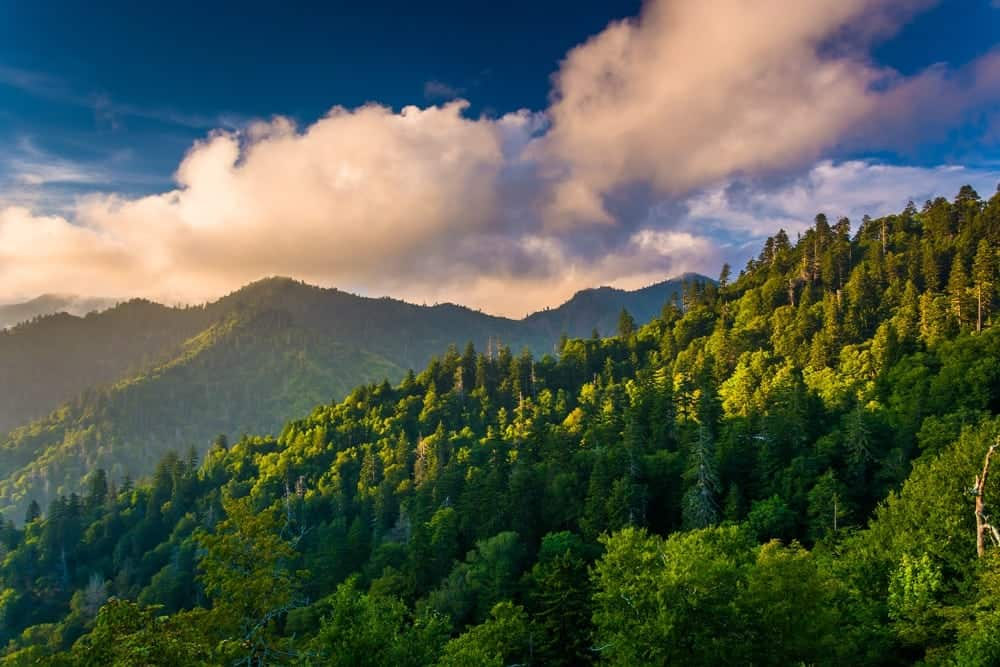 Springtime in the Smoky Mountains view from a Gatlinburg cabin