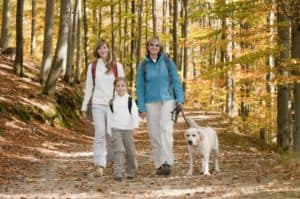 Family hiking at gatlinburg pet friendly cabins