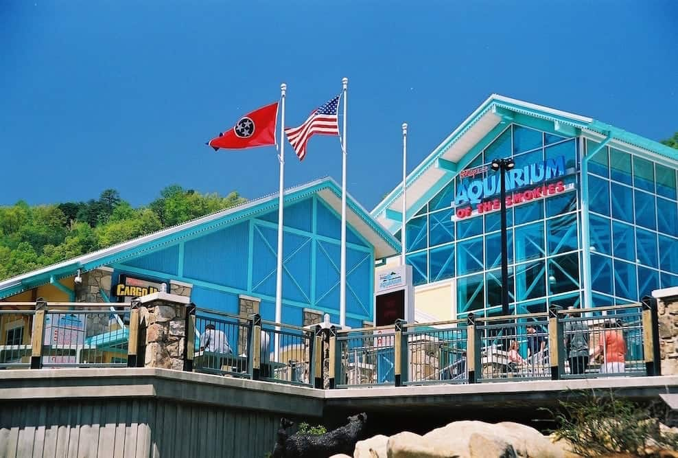 Picture of Ripley's Aquarium of the Smokies in downtown Gatlinburg TN.