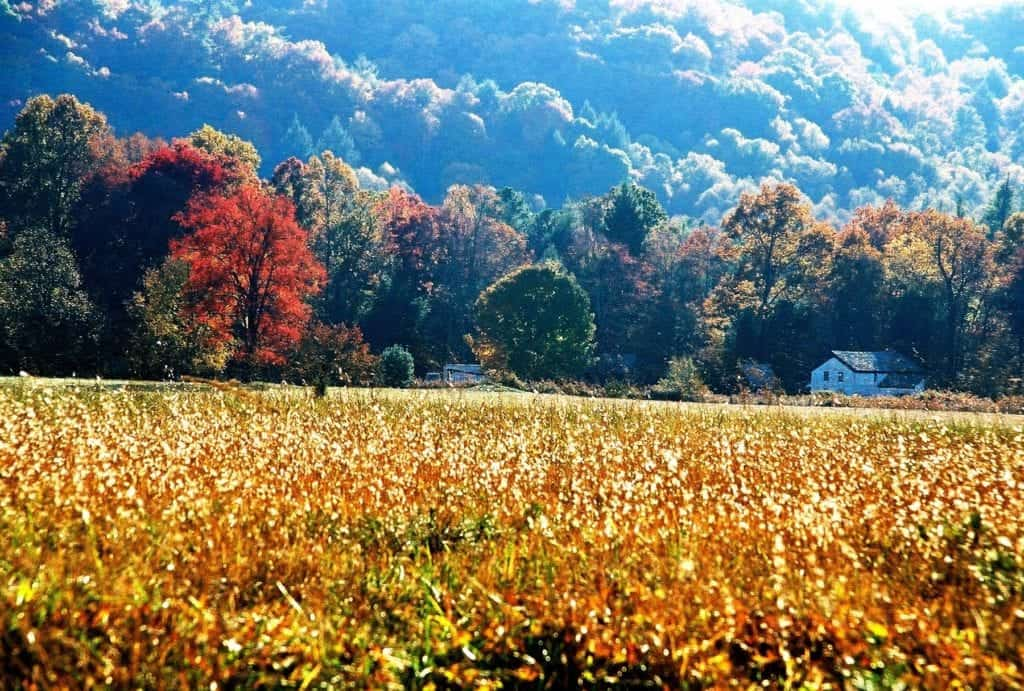 Cades Cove TN in the fall