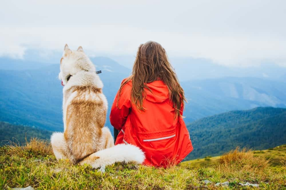 girl-and-dog-in-mountains-on-hike