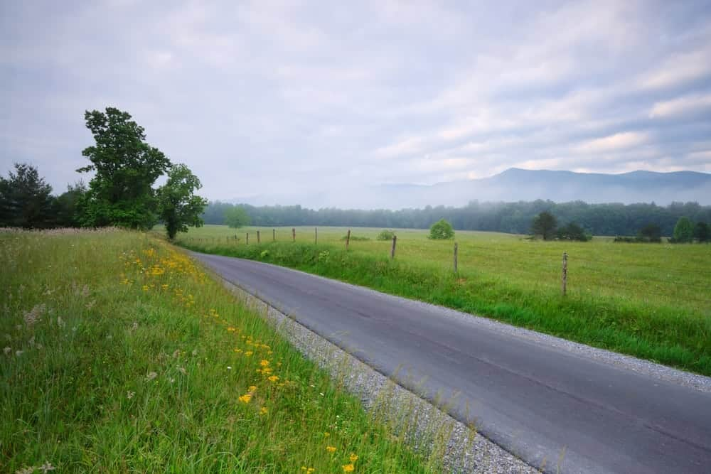 cades cove loop road in smoky mountains